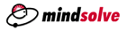 MindSolve Technologies
